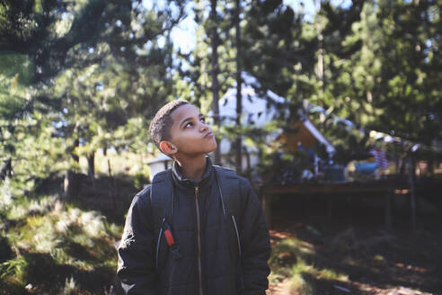 Curious boy hiking in woods - CAIF23639