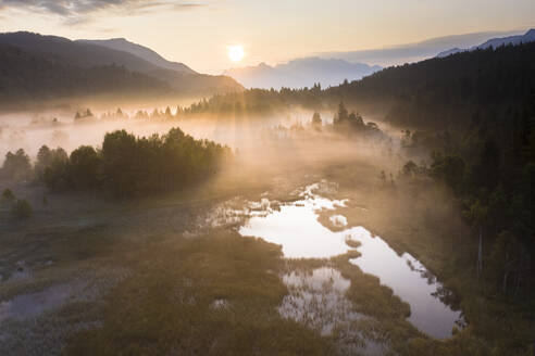 Fog at sunrise over the swamp of Pian di Gembro Nature Reserve, aerial view, Aprica, Valtellina, Lombardy, Italy, Europe - RHPLF13094