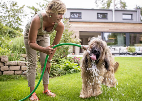 Woman with dog and garden hose in garden - BFRF02140
