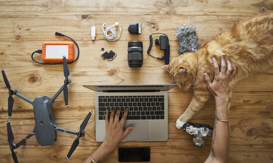 Person sitting at table with photografic equipment and ginger cat, using laptop, overhead view - VEGF01213