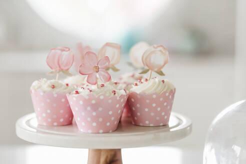 Pink cupcakes - CAVF72062