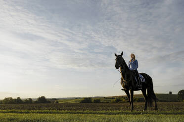 Woman on horse on a field in the countryside - JOSF04119