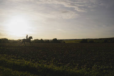 Woman riding horse on a field in the countryside at sunset - JOSF04128