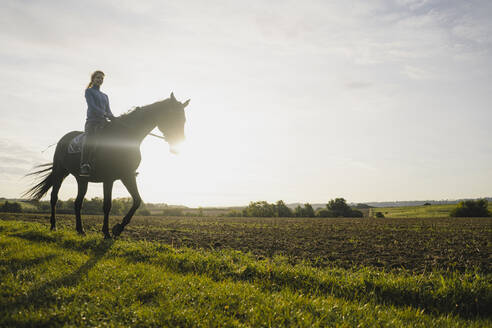 Woman riding horse on a field in the countryside at sunset - JOSF04131