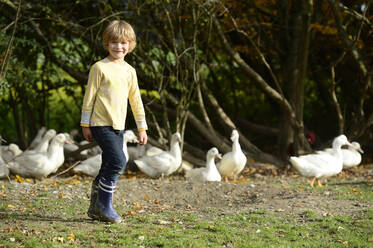 Boy with domestic ducks on meadow - ECPF00812
