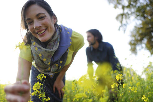 Woman picking yellow flowers on meadow, man in the background - ECPF00818