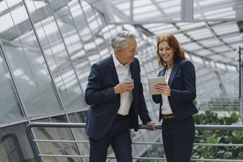 Smiling businessman and businesswoman talking in modern office building - JOSF04157
