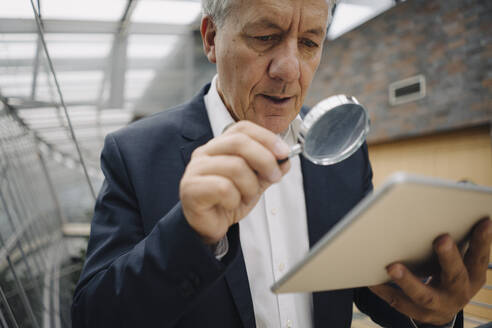 Senior businessman with magnifying glass reading tablet in office - JOSF04220