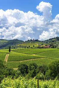 Italy, Tuscany, Vineyards near San Gimignano - PUF01810