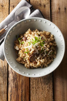 Overhead view of bowl of risotto with mushrooms - DREF00023