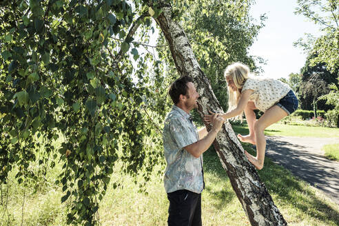 Father helping daughter climbing a birch trunk in park - WFF00235