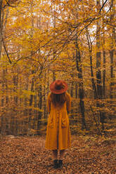 Fashionable redheaded young woman in autumnal forest - AFVF04891