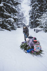 Woman pulling fir tree and three children on sledge, Jochberg, Austria - PSIF00350