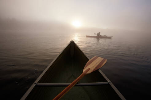 Solo paddling on a misty pond at sunrise. - CAVF72857
