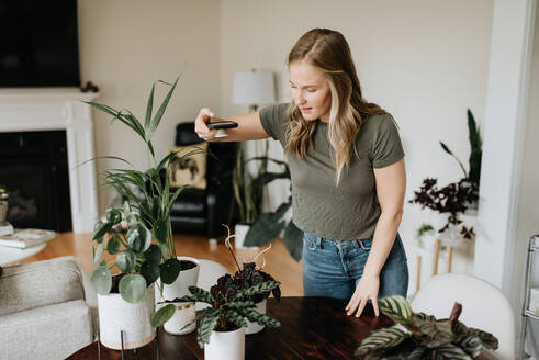 Woman taking photo of house plants with mobile phone - ISF23676