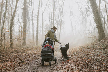 Mother with children and border collie during forest walk in autumn - DWF00537