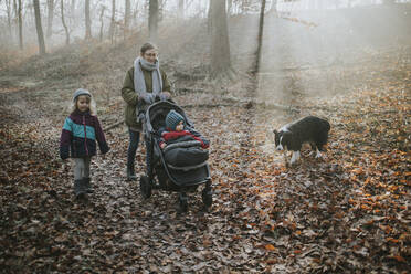 Mother with children and border collie during forest walk in autumn - DWF00552