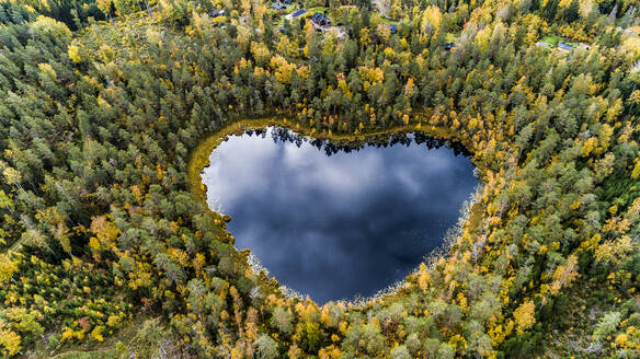 Heart-shaped lake surrounded by forest - JOHF05955