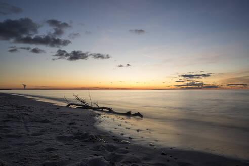 Sonnenuntergang am Weststrand, Ostsee, Treibholz, Langzeitbelichtung, Prerow, Mecklenburg-Vorpommern, Deutschland - STBF00531