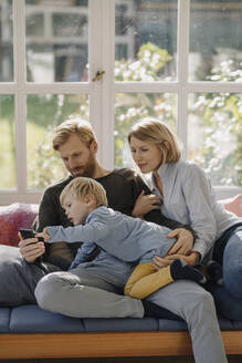Family using cell phone in sunroom at home - KNSF07077