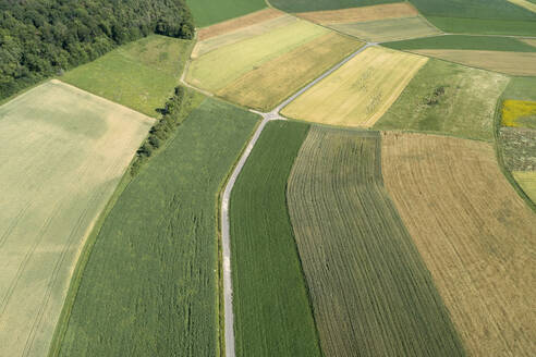 Germany, Bavaria, Franconia, Aerial view of green fields and dirt road - RUEF02587
