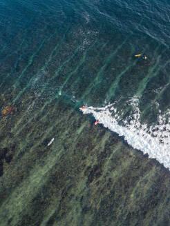 Aerial view of surfers in the ocean - CAVF74088