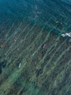 Aerial view of surfers in the ocean - CAVF74097