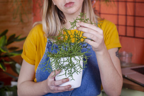 Close-up of woman taking care of a Rhipsalis plant on her terrace - RTBF01391