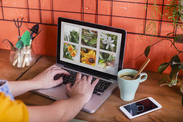 Close-up of woman using laptop with flowers on screen - RTBF01403