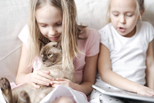 Smiling little girl stroking Burmese cat while her sister reading a book - EYAF00915