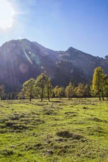 Grosser Ahornboden in Karwendel mountains in autumn, Hinteriss, Austria - MAMF01101