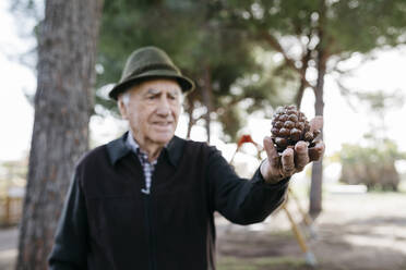 Old man looking at pine cone in his hand - JRFF04125