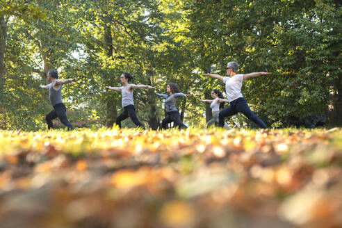 Group of women practicing yoga in park - JOHF07533