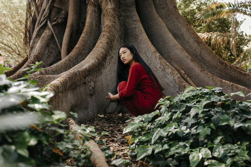 Beautiful young woman wearing a red dress crouching at a tree with large roots - TCEF00130