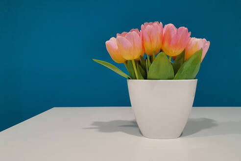 Germany, Bunch of pink tulips in white vase - NGF00543