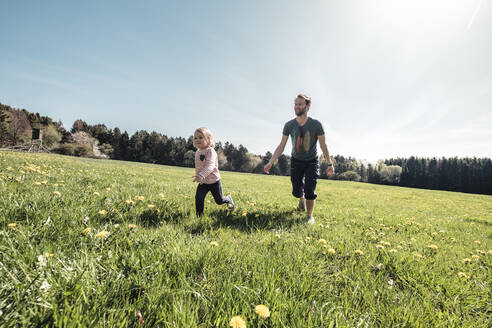 Father and little daughter having fun together on a meadow in spring - WFF00287