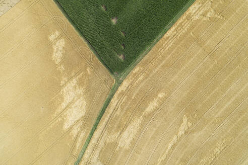 Germany, Bavaria, Drone view of green and yellow countryside fields in summer - RUEF02632