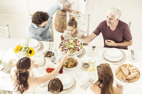 Family and friends having lunch together - SDAHF00636