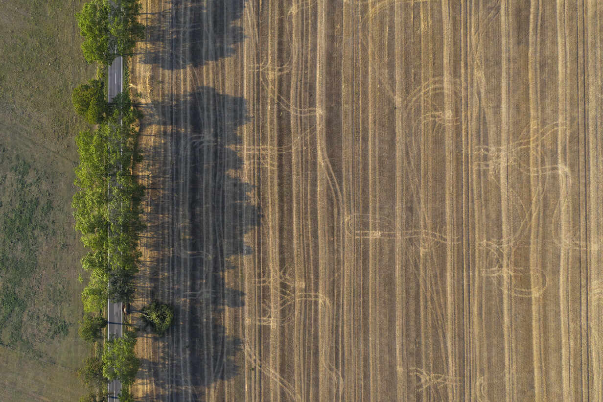 Germany, Brandenburg, Drone view of treelined country road and brown field - ASCF01099 - Anke Scheibe/Westend61