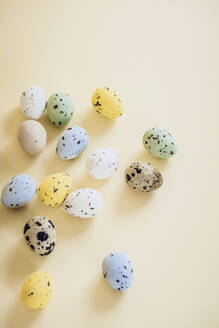 Spotted eggs on yellow background - JOHF09111