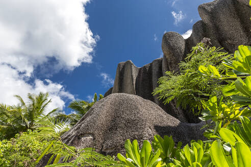 Seychelles, La Digue, Low angle view of granite cliff at Anse Source dArgent - MABF00551