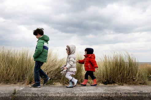Siblings exploring beach - ISF23788