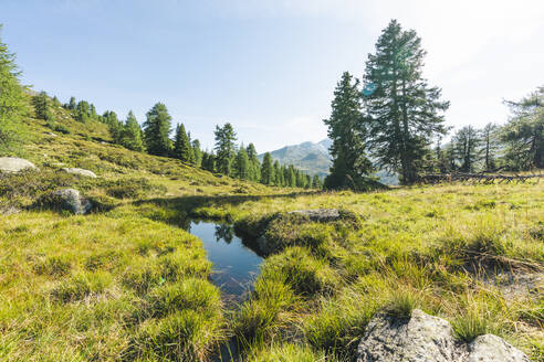Pond, Alps, Grisons, Switzerland - HBIF00041