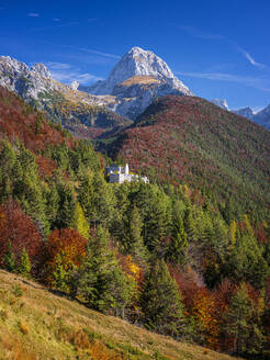 Slovenia, Autumn forest surrounding secluded building in Triglav National Park - HAMF00587