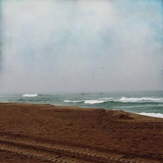 France, Nouvelle-Aquitaine, Contis, Morning at Contis Plage beach - DWIF01079