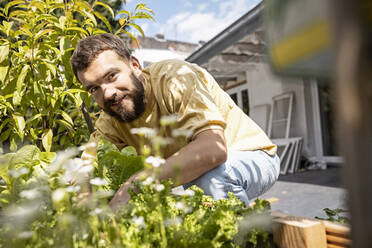 Young man growing vegetables on his rooftop terrace - PESF01799