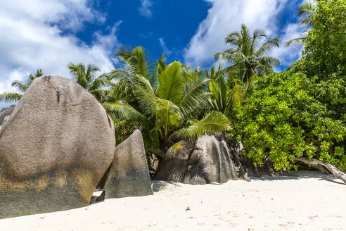 Seychelles, Granite boulders at Source dArgent - MABF00558