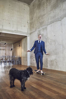 Senior businessman skateboarding in his office, dog is watching - MCF00612