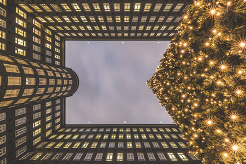 Germany, Hamburg, Directly below view of glowing Christmas tree and exterior of Sprinkenhof building - KEBF01483