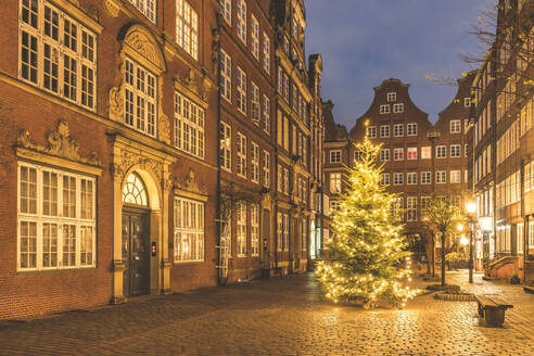 Germany, Hamburg, Christmas tree glowing in middle of Peterstrasse at dusk - KEBF01495